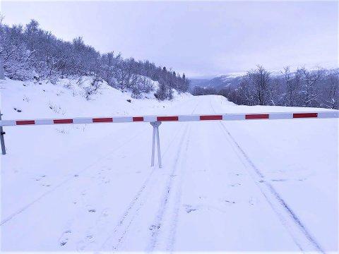 STENGT: Veien over Imingfjell er nå stengt. Ifølge Statens vegvesen er det observert villrein nær fylkesvei 2814 på Imingfjell som gjør veien stengt inntil videre.