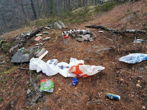 Angrende synder: Birger Steen brukte litt av lørdagen på å rydde etter en fest i skogen. Nå har han fått en beklagelse fra en av festdeltagerne. - Flott gjort, sier Birger.