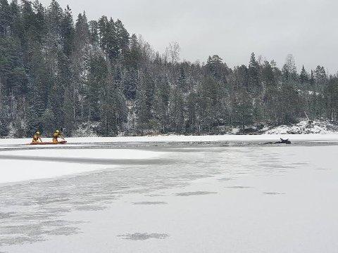 SVØMMER: Brannvesenet på Flesberg ble tilkalt for å bistå en elg som hadde satt seg fast. Elgen svømmer til høyre i bildet.