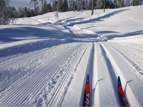 Spenn på deg skia - på lørdag blir det familieskirenn i Lyngdal.