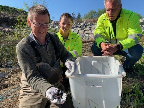 Mye liv: Børre Dervo (t.v.) med salamandere i hånden. Bak Eva Kristin Aarbakk og Johnny Løcka fra Kongsberg Teknologipark.