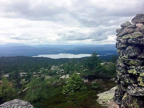 SELSLINATTEN: Fra varden på Selslinatten ser du vidt utover og ned til blant annet Bolkesjø og Follsjøen. Foto: Mari Nymoen, Telen