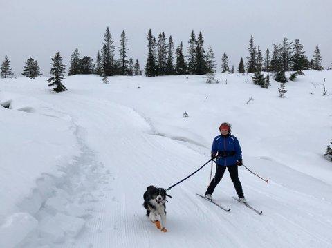 KOS: Charlotte Wilhelmsen og hunden Mira koser seg i løypene på Blefjell.