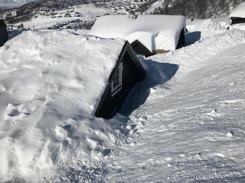 NOK Å GJØRE: Rauland vaktservice har nok å gjøre. Nå tar kommunen regningen der det er mest nødvendig. foto: privat