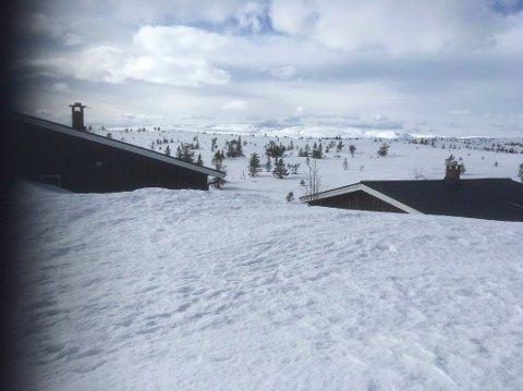 INGEN Å SE: Søndag ble svært stille dag i fjellheimen. Arne Sørensen møtte en eneste person på hele turen.