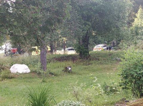 VÆPNET POLITI: Aksjon nær Lampeland. Politiet ser etter en mann som har oppført seg truende.