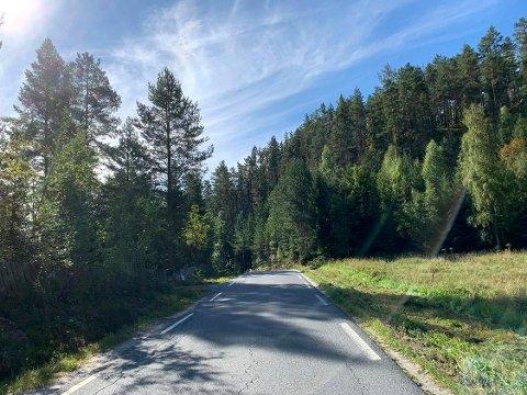 FYLKESVEI 96: Lurdalsveien snor seg gjennom tre kommuner, men det er ikke skiltet hvor grensen mellom Kongsberg og Øvre Eiker går. Grensen går rett bak svingen på dette bildet.