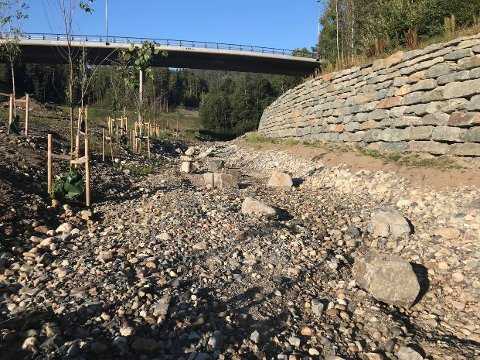 TØRRLAGT: Store deler av Sellikbekken er helt tørrlagt, noe som bekymrer Kongsberg Jeger- og Fiskeforening. Bildet er tatt    3. september.