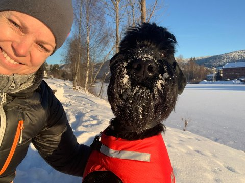 KLE PÅ HUNDEN I KULDA: Veterinær og dyreklinikkeier Laila Solvang ber hundeiere være obs på at hundene kan fryse i kulda. Selv har hun kledd på Riesenschnauzervalpen, Emil, et varmt dekken. Foto: Privat.