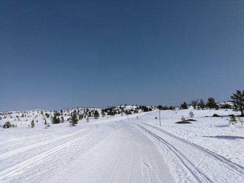 Løyper: Det er fortsatt mulig å ta seg en skitur på Blefjell, men dette er siste helga det kjøres løyper denne sesongen. Bildet er tatt i nærheten av Strutåsen søndag formiddag.