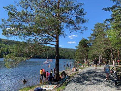 SOMMER: En tur til Kjennerudvannet var populært blant mange  søndag ettermiddag, til tross for litt kjølige badetemperaturer.
