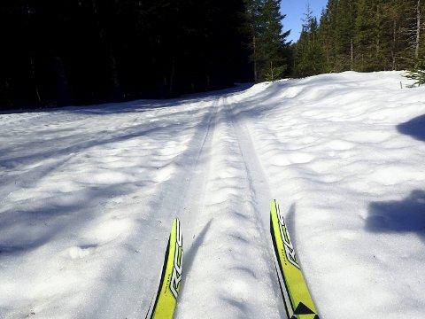 GAMLELØYPA: Bra med snø i gamleløypa som går parallelt med bilveien fra Eggevollen mot Eiksetra. foto: tom Helgesen