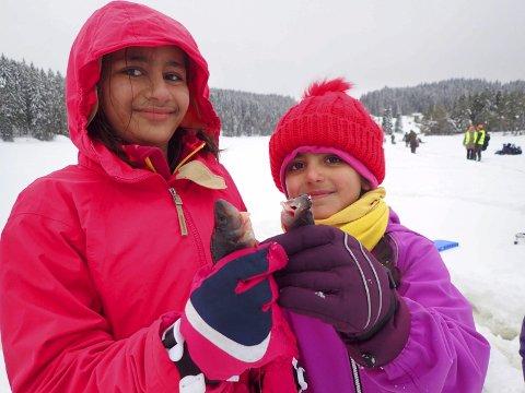Dagens fangst: Hania Javid (11) og Dilaan Kouja (8) med to av abborene de klarte å dra opp på Isfiskedagen på Garsjø.