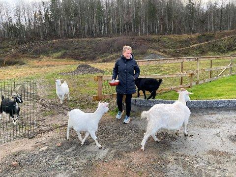 Gleden i hverdagen: For Liesl Mindt er det ikke hvor lenge hun er ute som teller, men at hun er det. – Jeg får energi av å være på tur eller ute med geitene, sier hun.