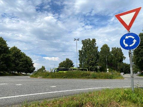 Uoversiktlig: Ugresset i rundkjøringen ved Lierbyen har vokst seg høyt og gjør sikten mindre god.