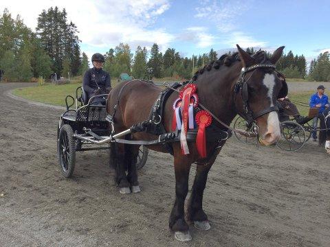 NM-sølv.: Sunniva og hennes lånte hest Skogtind tok NM-sølv i DMP-kjøring på Toten, etter å ha vunnet to av tre øvelser.
