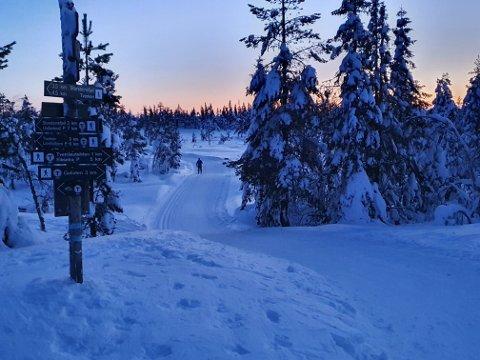 Fortsatt bra: Det er fortsatt svært gode skiforhold på begge sider av Lierdalen. Her fra ingangen til runden rundt Storsteinsfjell