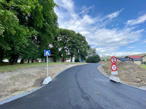 Minner ved veien: Veien er ny, men fortidsminnefunnet, som er mellom veien og alleen til venstre, er trolig mye eldre enn trærne, i følge entreprenøren.