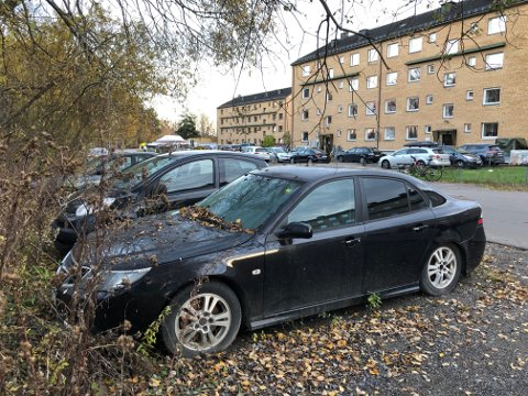 STÅR I SKOGHOLTET: Bilene har ikke lov til å stå her. De blir snart tauet bort.
