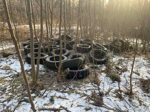 DEKK: Ronny Andersen anslår at han fant 20-25 dekk dumpet i naturen.
