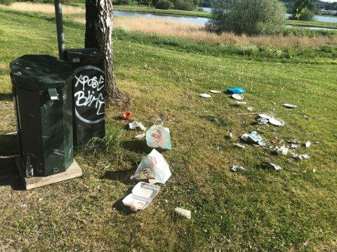 SØPPEL: I Lillestrøm sentrum, langs flomvollen og ved populære badeplasser var det ifølge seksjonsleder Svein Rune Ussberg problemer med søppel som fløt i løpet av pinsehelgen.