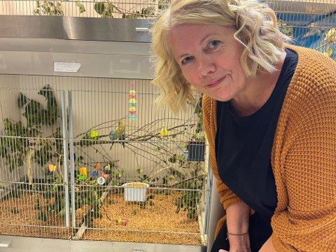 UBUDEN GJEST: Kjersti Johnsen fikk besøk av en pjusk og forvirret fugl. Nå håper hun den vil få et hjem.