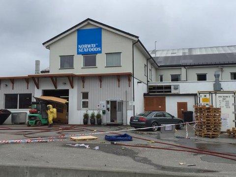 Spesialstyrker fra brann tok seg inn i bygningen for å stanse ammoniakklekkasjen.