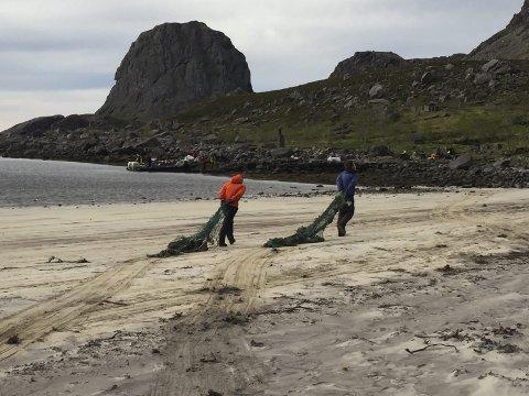 Rydding: Nordland fylkeskommune gir 185.000 kroner til Lofoten for planlegging av søppelrydding, og undervisning knyttet til marin forsøpling.