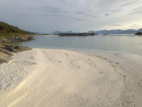 Forekomster: Nordland har de hyppigste forekomster av skjellsand i Norge. Foto: Knut Johansen.
