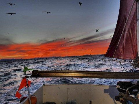 FAVORITT: – Det røde lyst mot Innlandet er min favoritt, slår Petter Myklebust fast. Alle foto: Petter Myklebust