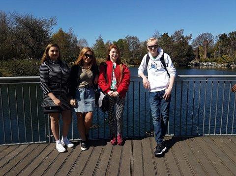 Amalie-Nikoline Olsen, Sofie Taraldsen, Erica Kvalvik Dahlberg og William Clarens Røsberg Olsen er utplassert i reisebyrå i Irland
