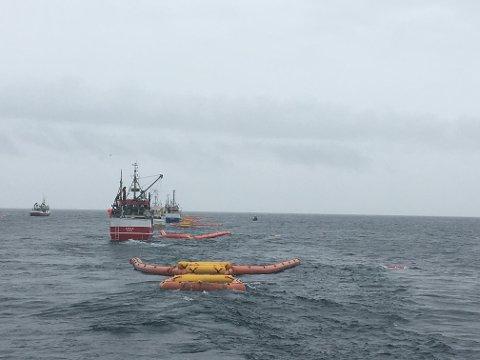 Åtte fiskebåter var i aksjon da sjøen utenfor Svolvær skulle ryddes for popcorn.