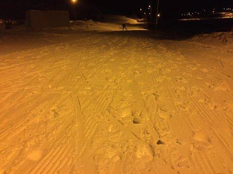 Midt i skiløypa: Leknes skiklubb har gått opp skiløypa. De ønsker at folk skal gå til siden i løypa, og ikke midt i.