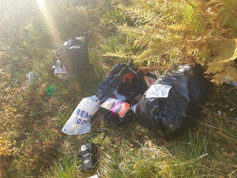 SØPPEL: Denne søppelhaugen ble funnet i grøfta ved Finstad. Her ble det også funnet navn.