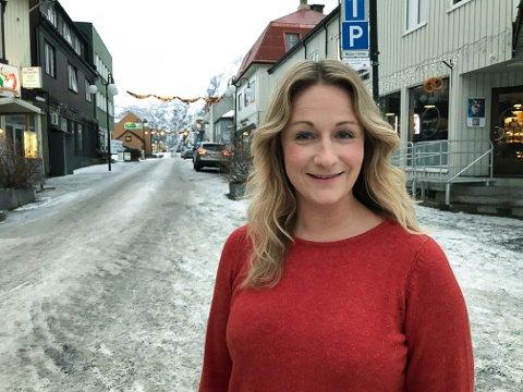 Første trinn i ny julegate for Svolvær er kjøpt inn og montert opp, kan prosjektleder Cecilie Helen Walle i Vågan Næringsforening konstatere.