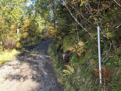 Avskiltet: Det ulovlig oppsatte skiltet om «Privat vei» opp mot Grønnåsen, Tuva og Blåtind er fjernet.