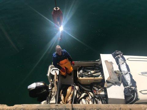 FORNØYD. Tore Kristoffersen var fornøyd med både fangst og været.