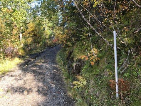 AVSKILTET: Grunneier har allerede fjernet det ulovlig oppsatte skiltet om «Privat vei» opp mot Grønnåsen, Tuva og Blåtind.