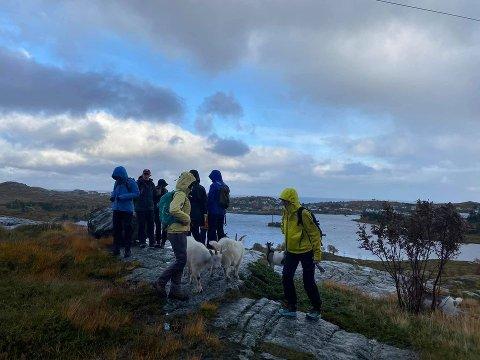 """TURKAMERATER: Geitene liker å gå tur. Det har Karina Olsen utnyttet gjennom forretningsideen """"Hiking with goats"""". Foto: Privat"""