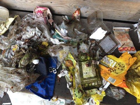 Plastsøppel på avveie utgjør et alvorlig miljøproblem.