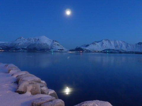 Vakkert måneskinn over Buksnesfjorden.
