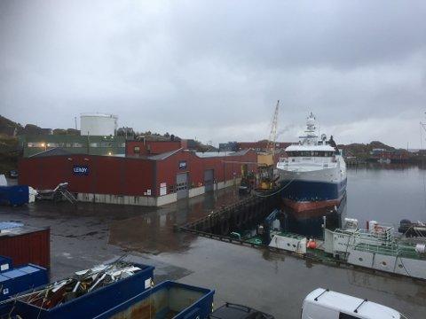 Lerøy Norway Seafoods i Stamsund.