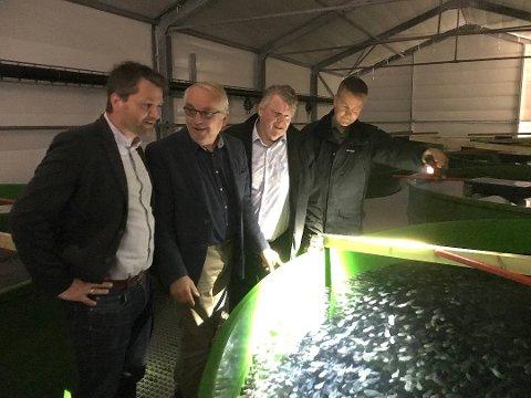 HAVNEKASSA: Rådmanenn mener havnekassa bør bidra til en nettstasjon til Trond Rafoss' oppdrettsanlegg på Hausvik. På bildet er KrF på besøk ved anlegget. Fra venstre Jon-Are Åmland, Bjørn Robstad, Hans Fredrik Grøvan og Trond Rafoss. I tanken har han 18 000 rognkjeks.