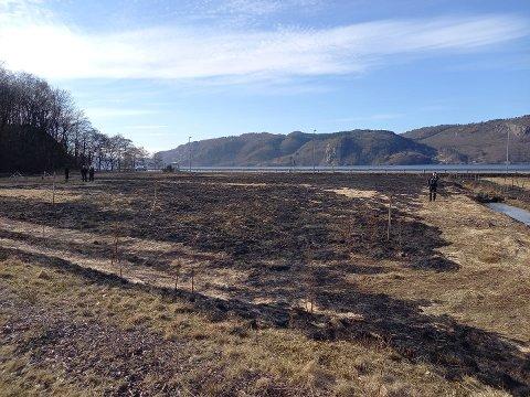 SVIDD: Det var et jorde ved Kvavik som ble svidd fredag.