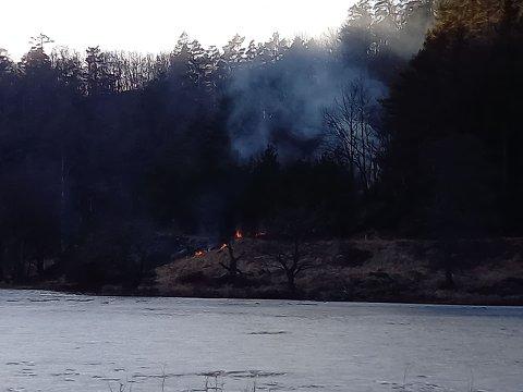 BRANN: Det brenner i terrenget i Lyngdal.