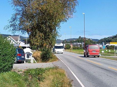 Her i Agnefestveien skar bilen ut av kjørebanen og kjørte i et tre.