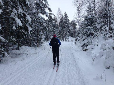 SKITUR: Sannsynligheten for om du har tatt en skitur i år eller ikke, øker med hvor høy inntekt husstanden har, viser tall fra en ny undersøkelse.