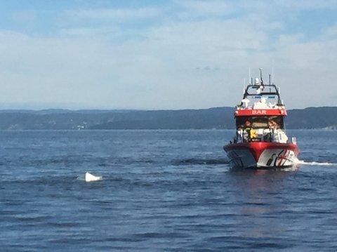 Redningsskøyta var raskt på stedet for å få jolla opp fra vannet. To menn ble fløyet til sykehus med Sea King.