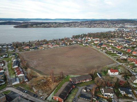 Jordet mellom Dyreveien og søndre Kallum på Ekholt er regulert for boligbygging. Snart skal politikerne i Rygge ta stilling til prosjektets omfang.