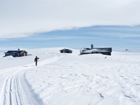POP: Langt flere utlendinger enn nordmenn leier seg hytte.